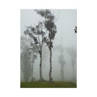 Foggy morning in Kona Canvas Print