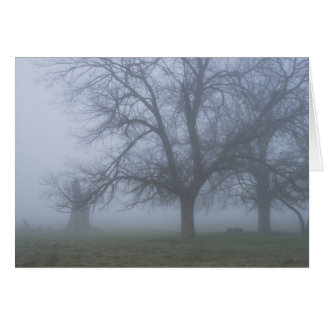 Foggy Morning Note Card