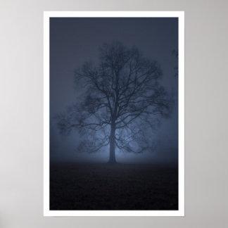 Foggy Morning Oak Tree Poster