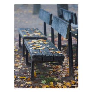 Foggy morning park bench, Germany Postcard