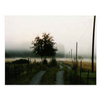 foggy morning postcards
