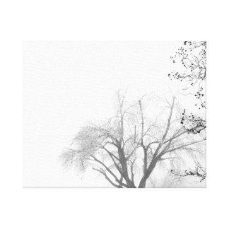 Foggy Morning Trees Canvas Print