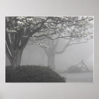 Foggy Mornings 2 Poster