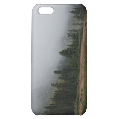 Foggy Mountain Scene iPhone 5c case