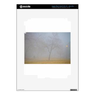 Foggy Park Morning iPad 3 Decal