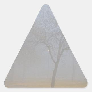 Foggy Park Morning Triangle Sticker