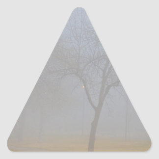 Foggy Park Morning Triangle Sticker