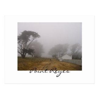 Foggy Point Reyes Postcard