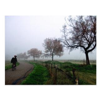 Foggy Rider Postcards