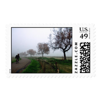 Foggy Rider Stamps