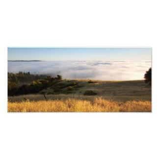 Foggy Santa Cruz Mountains Photo
