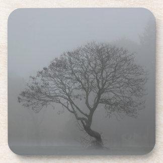 Foggy Tree Coaster