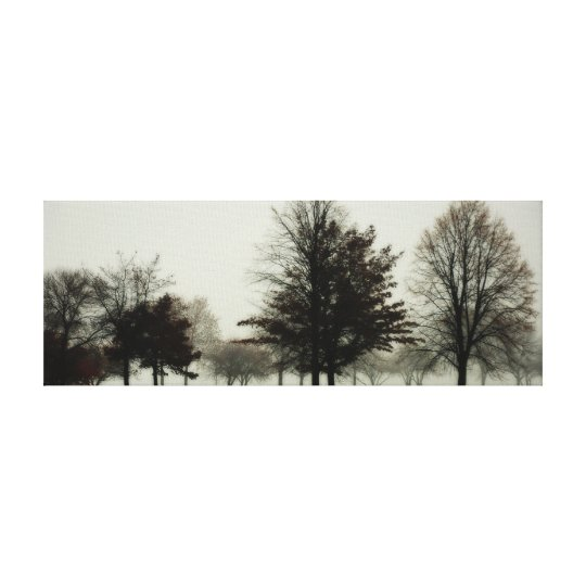 Foggy Trees Stretched Canvas Print