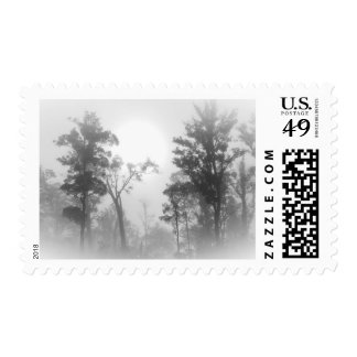Foggy treescape postage stamp