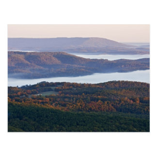 Foggy valleys and fall foliage in Ozark Postcard