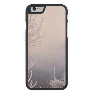 Foggy Winter Day by the River Carved Maple iPhone 6 Slim Case