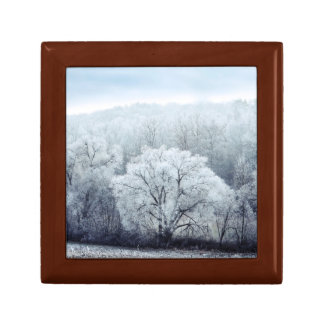 Foggy Winter Landscape with snow covered Trees Gift Box