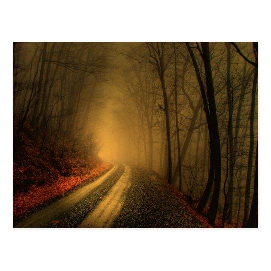 foggy wood postcard