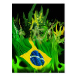 Fogo de Brasil Post Cards