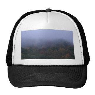 fogy morning hats