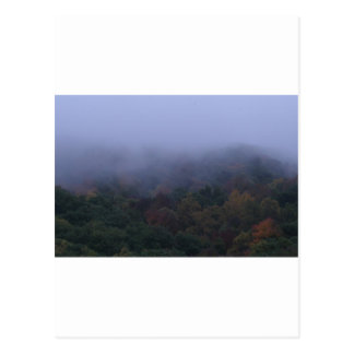 fogy morning postcard