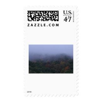 fogy morning stamp