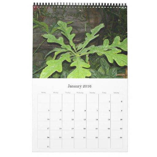 Foilage de lujo, calendario 2009 - modificado para
