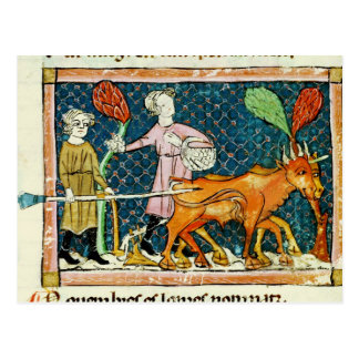 Fol.59r October: Ploughing Postcard