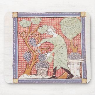 Fol.59r September: The Harvest Mouse Pad