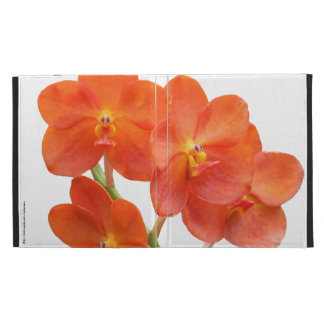Foldable Ipad Case with Red Scarlet Orchid