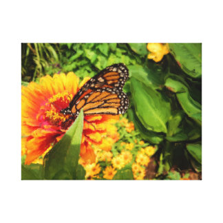 Folded Wings Monarch Butterfly on Zinnia Painting Canvas Print