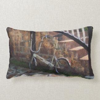 Folding Bicycle Antigua Pillow