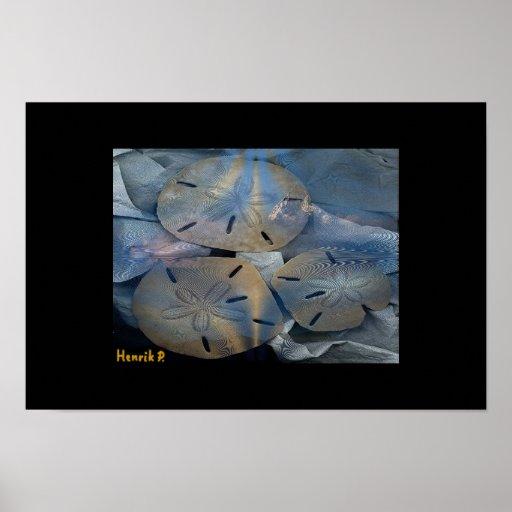 Folding Sea-stars Posters