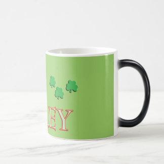 Foley Family Name Magic Mug