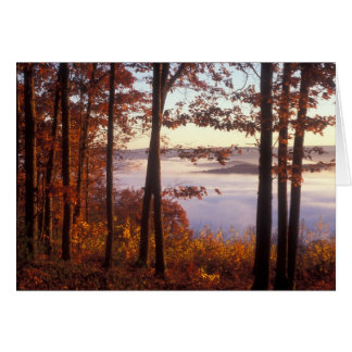 Foliage above the Fog, Quabbin Reservoir Card