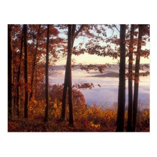 Foliage above the Fog, Quabbin Reservoir Postcard