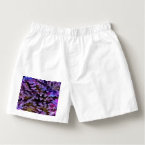 Foliage Abstract In Blue, Pink and Sienna Boxers