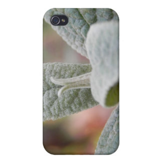 Foliage - Butterfly Bush iPhone 4 Case