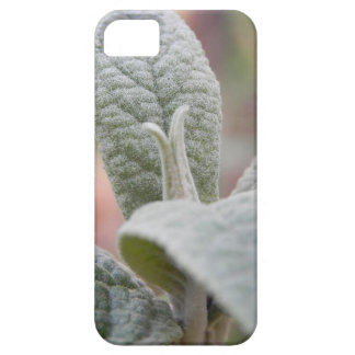 Foliage - Butterfly Bush iPhone 5 Cases