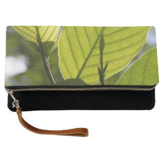 Foliage Clutch