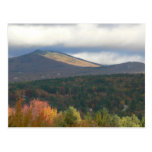 Foliage In Stowe Vermont Postcards
