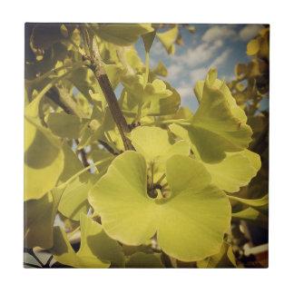 Foliage Tile- Ginkgo