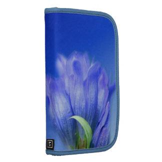 Folio azul del carrito de la flor de la genciana planificadores