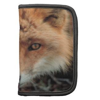 Folio de la cartera de la especie del Fox Organizadores