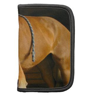 Folio de la cartera de la foto del caballo de la c planificadores