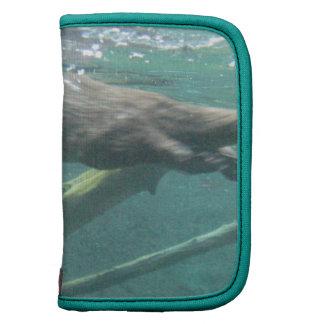 Folio de la cartera de la nutria de río planificador