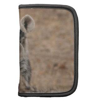 Folio de la cartera de los Hyenas Organizadores
