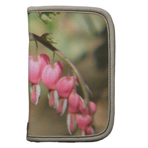 Folio de la cartera de los Perennials del corazón  Planificadores