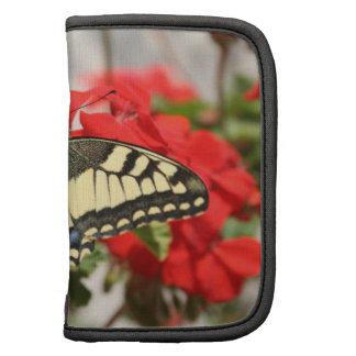 Folio de la cartera de Swallowtail del anís Organizadores