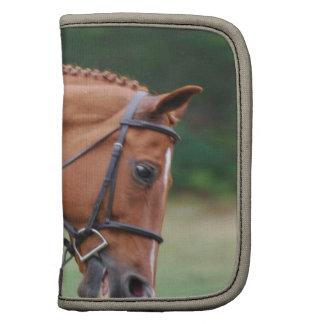 Folio de la cartera del caballo de la demostración planificadores